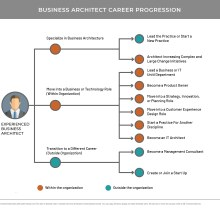 Organization-style chart showing progression of business architect career choices